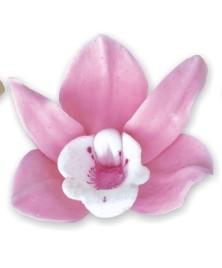 Orhidee ROZA 010  12 buc/cutie