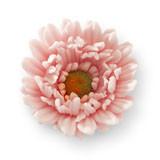 Gerbera din zahar roza 052203 PJT set 12 buc