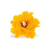 Hibiscus din zahar galben 052101 PJT  set 4 buc