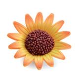 Floarea soarelui din zahar medie 05022 PJT set 40 buc